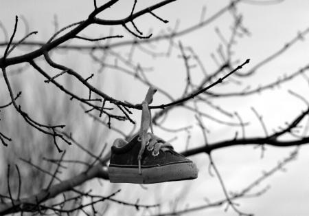 Summer Sneaker Suspended
