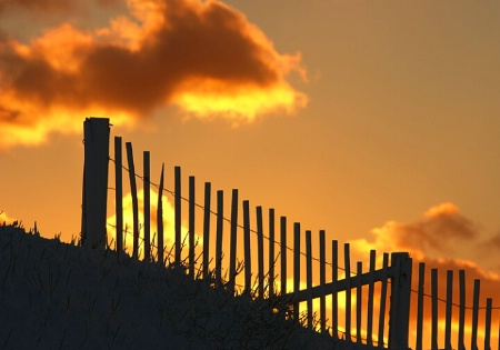 Dune Fence Sunset