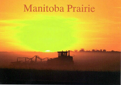Manitoba harvest sunset - ID: 665271 © Heather Robertson