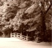 Bridge in Meiji P...