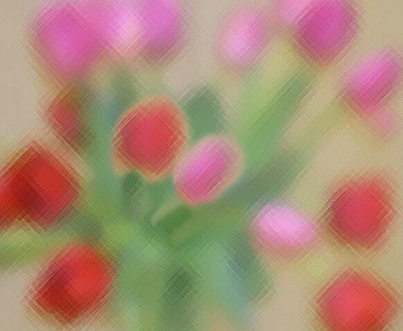 Tulips - ID: 670659 © Carol Engstrom
