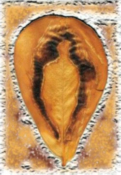 Pregnant Earth