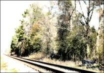 On the Edge of the Railroad Track