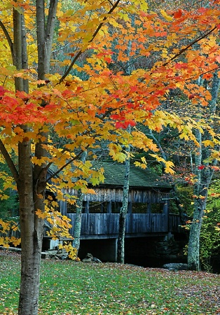 Little Covered Bridge