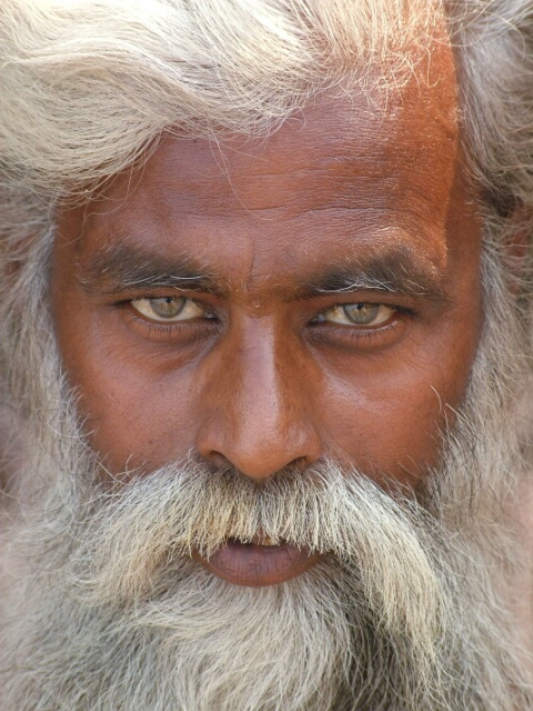 looking into the eyes of india