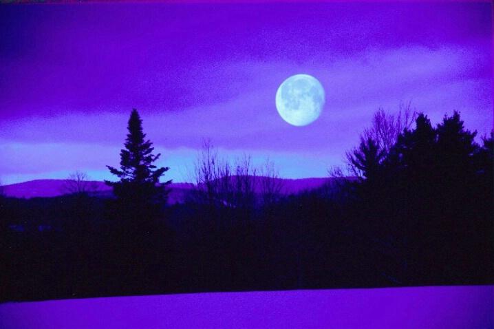 Winter-blue Moon - ID: 696984 © Deborah A. Prior