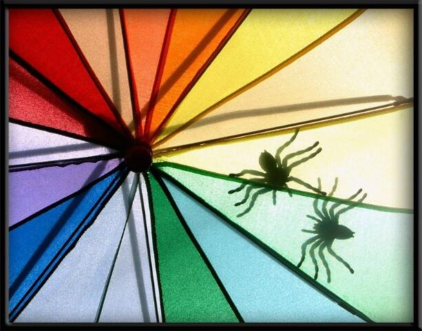 Umbrella Double Fella