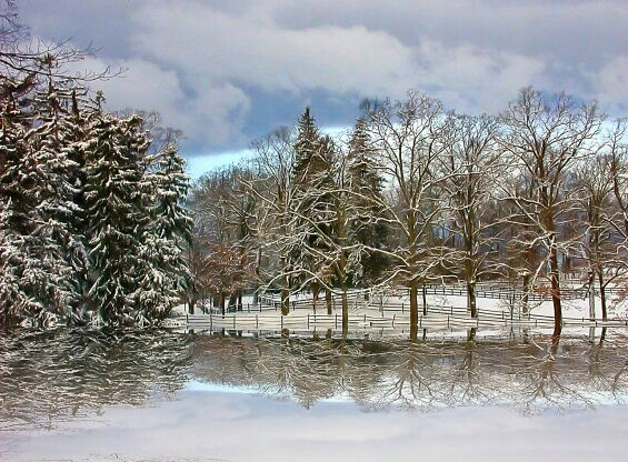 Winter Reflections II