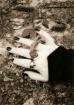 ~Reach Out~