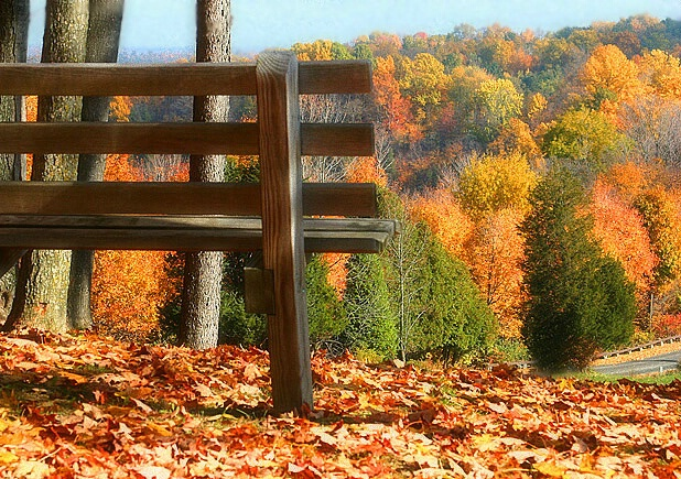 On the Edge of Fall