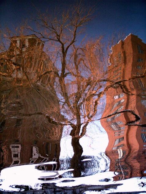 Water Reflections - ID: 726204 © Michèle J. Thomas