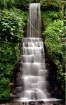 Fresh flowing wat...