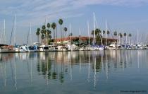 Calm Harbor Reflections