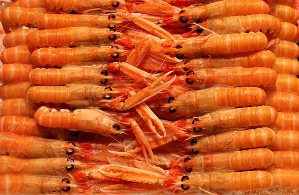 Lobster parade