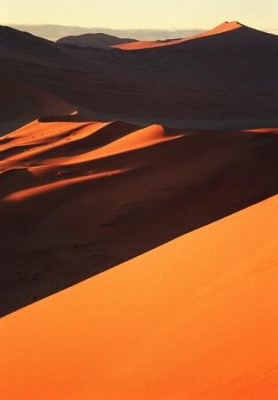 Orange Vs Shadow