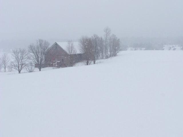 Winter in Stowe