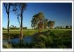 ~ Aussie Landscap...