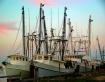 Trawlers II