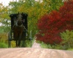 Amish Journey
