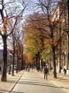 Paris Street 2003