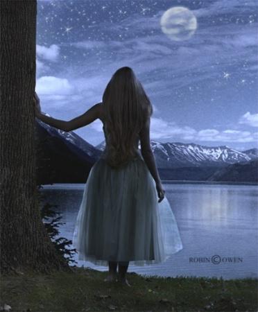Moonbeams and Starlight