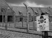 Auschwitz - 60 ye...