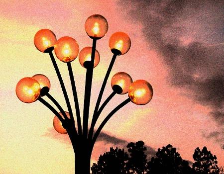 Light Up the Night (POTD #268)