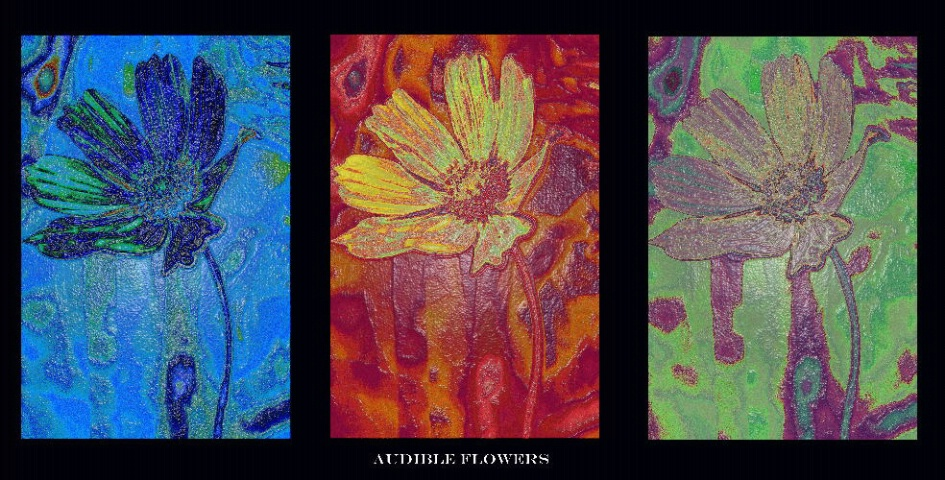 Audible Flowers
