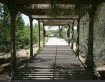 A Shady Entrance