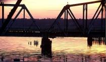 Everett Marina At Night