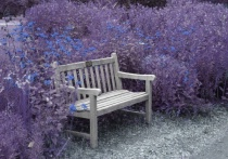 Garden Bench Blue/Purple