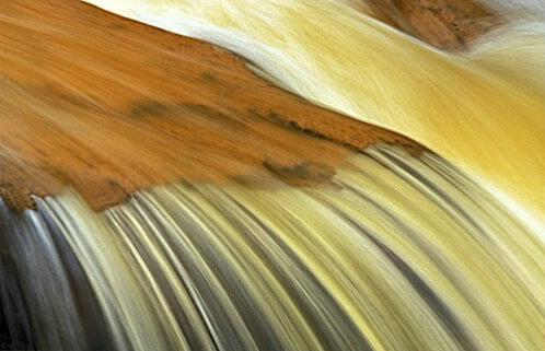 gold falls - ID: 514897 © Brian d. Reed