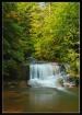 Coleman Creek Fal...