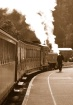 Puffing Billy, Be...