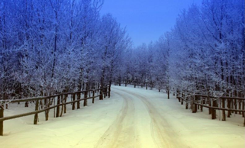 Frosty Lane #2 - ID: 526413 © ashley nicholas