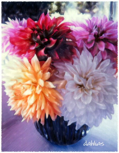 dahlias, too