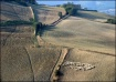 Tuscany, Fields o...
