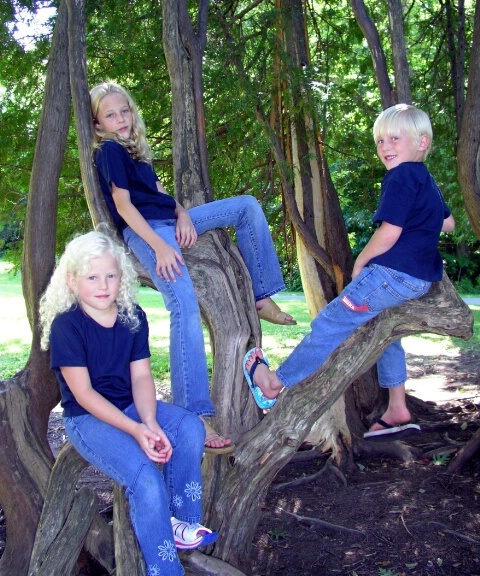 ~Monkeys in the monkey trees~