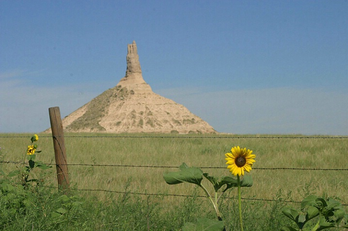 Chimney Rock and Sunflower - ID: 549577 © Donald E. Chamberlain