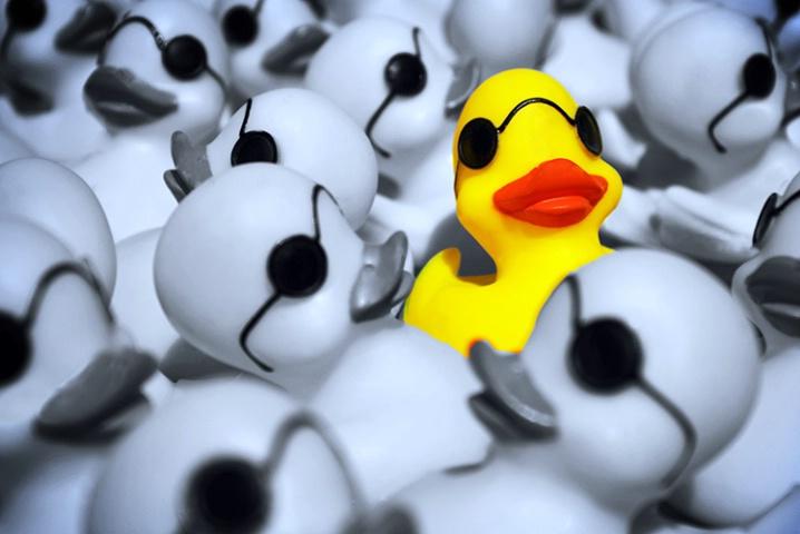 Duckscrepancy