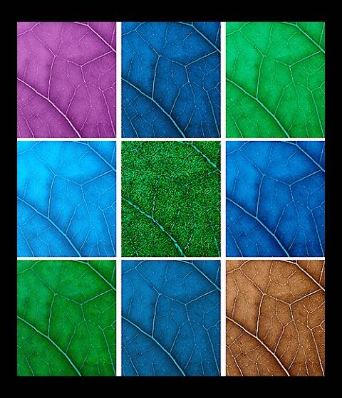 Leaf Panel, v2a