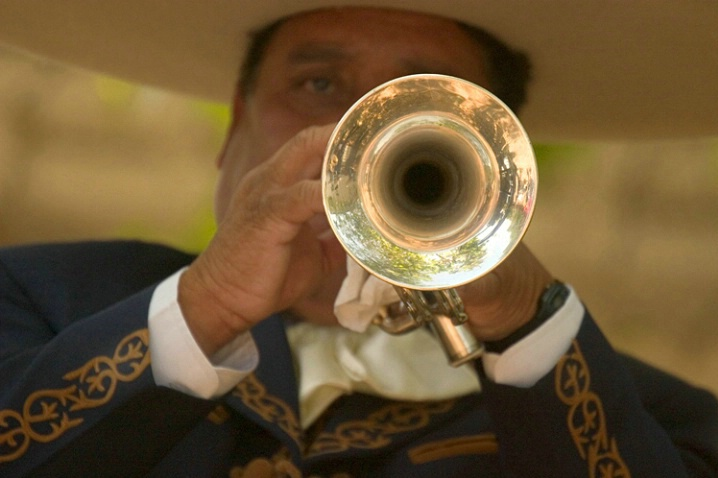 The Trumpet Player - ID: 890657 © Mary-Ella Bowles