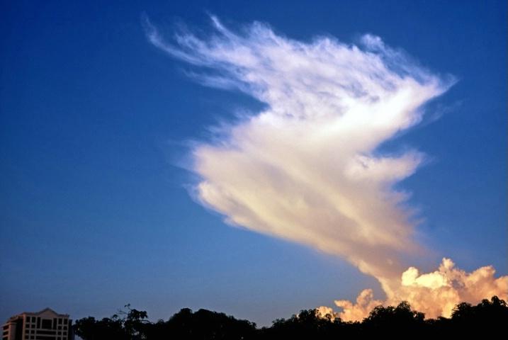 A Dancing Cloud