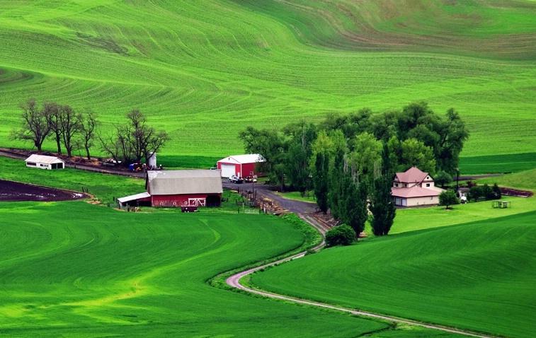 Green Acres - ID: 927527 © Jim Kinnunen