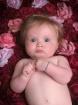 A Little Rosebud