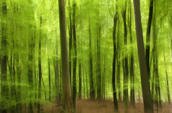 Green impression