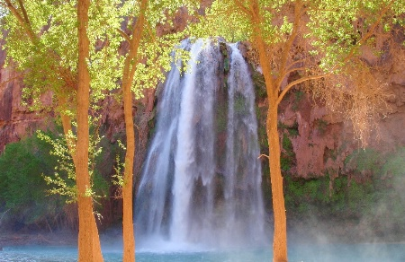 Havasu Falls Framed between Trees