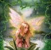 Enchanded Fairy P...