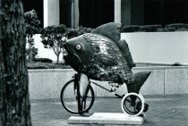 Like a Fish Needs a Bicycle...