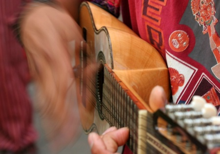 Charango Player